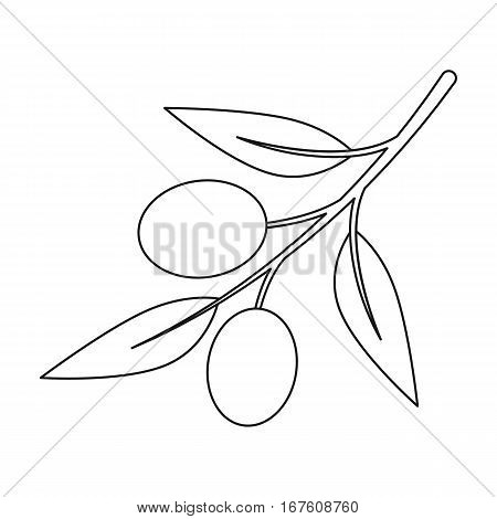 Olive icon outline. Singe vegetables icon from the eco food outline. - stock vector