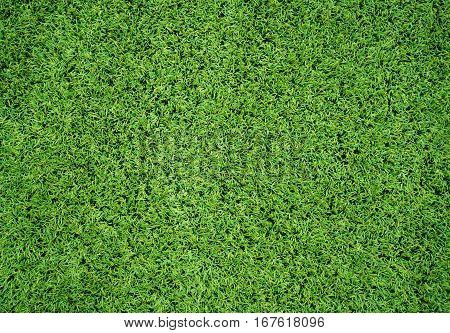Green Artificial Grass Turf Field background sport