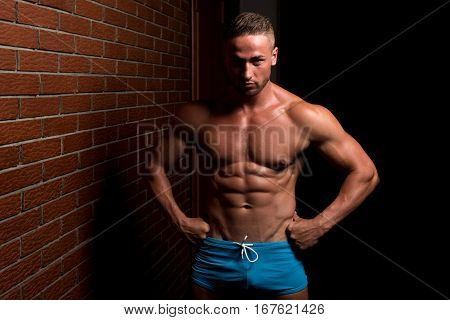 Standing Strong On Wall Of Bricks