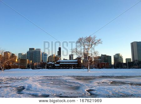 Chicago cityscape winter sunset with Willis Tower under clear blue sky
