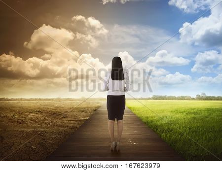 Back View Of Business Woman Standing Between The Changing Environment
