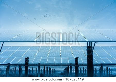 solar power plant photovoltaic panels in orderly rows