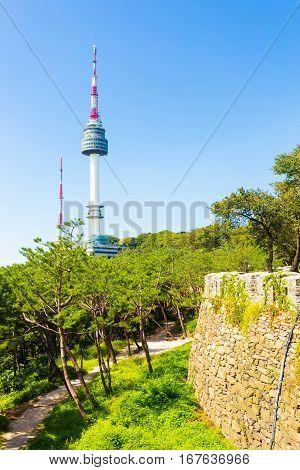 Seoul N Namsan Tower City Wall Trees V