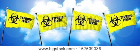 Typhoid fever flag, 3D rendering