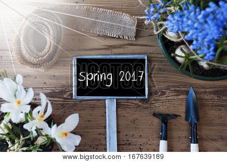 Sign With English Text Spring 2017. Sunny Spring Flowers Like Grape Hyacinth And Crocus. Gardening Tools Like Rake And Shovel. Hemp Fabric Ribbon. Aged Wooden Background