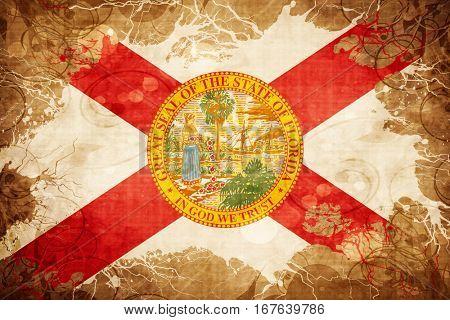 Vintage florida flag