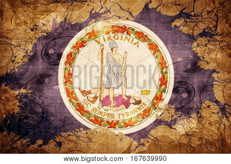 Vintage virginia flag