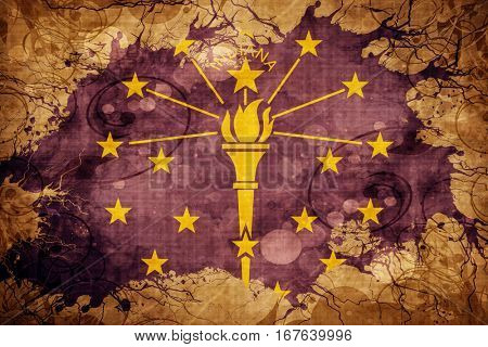 Vintage indiana flag
