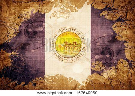 Vintage Toledo flag
