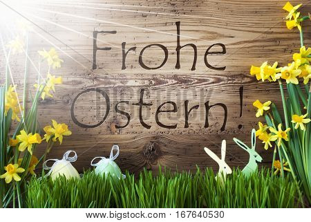 Wooden Background With German Text Frohe Ostern Means Happy Easter. Easter Decoration Like Easter Eggs And Easter Bunny. Sunny Yellow Spring Flower Narcisssus With Gras. Card For Seasons Greetings