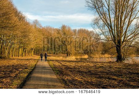 Man and woman walking along a path through a park in autumnal colors. It is at the end of a sunny afternoon in the Dutch winter season.