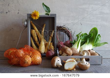 autumn still life with vegetables - bok choy, parsnips, mushrooms, beetroot and onions