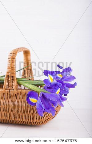 Bouquet Of Irises In Wicker Basket On White Wooden Background