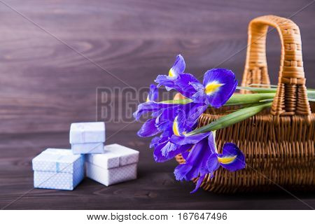 Bouquet of irises with gift boxes on dark wooden background.