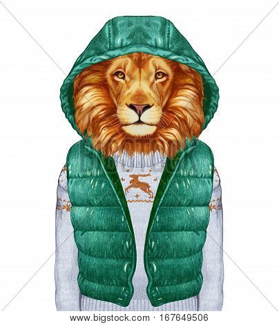 Animals as a human. Portrait of Lion in down vest and sweater. Hand-drawn illustration, digitally colored.