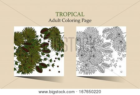 Adult antistress coloring page. Vector cards with tropic plants - palm leaves, seeds, nuts and ivy. Can be used for Invitation to the wedding or background.