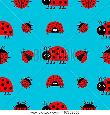 Ladybug Ladybird icon set. Baby collection. Funny insect. Seamless Pattern Wrapping paper textile template. Blue background. Flat design. Vector illustration.