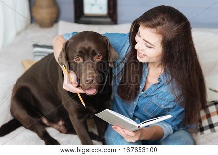 Always there for you. Joyful gorgeous elegant girl compiling a timetable using her pets cute help while sitting together on a couch in a living room