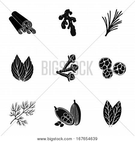 Herb and spices set icons in black style. Big collection of herb and spices vector symbol stock