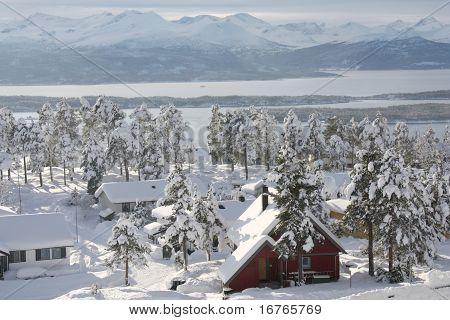 Winter neighbourhood