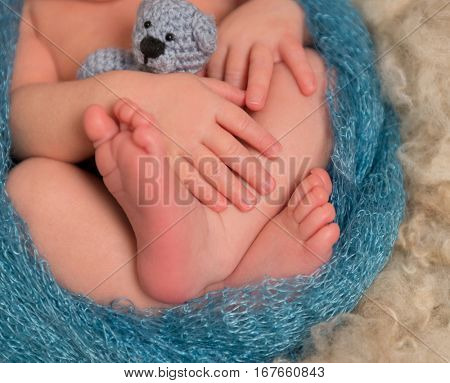 Little toes and fingers of a newborn sleeping with his toy, closeup