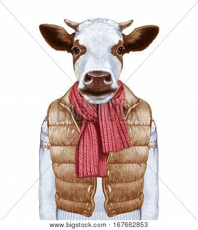 Animals as a human. Portrait of Cow in down vest and sweater. Hand-drawn illustration, digitally colored.