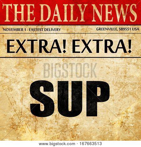 sup internet slang, newspaper article text