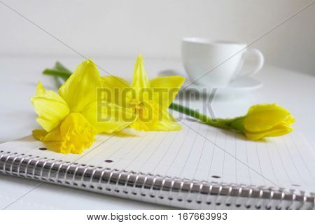 Spring styled stock photo. Still life with daffodil flowers, Narcissus, note book and cup of coffee. Blurred background. Image for blog or social media.