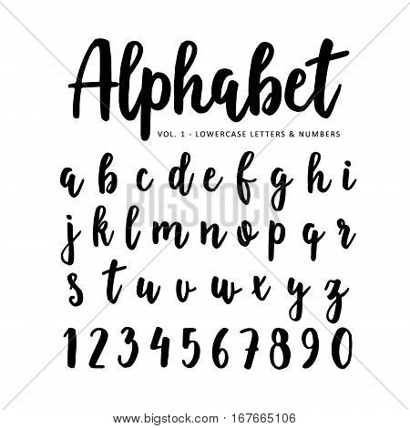 Hand drawn vector alphabet, font. Isolated letters and numbers written with marker or ink. Brush script.