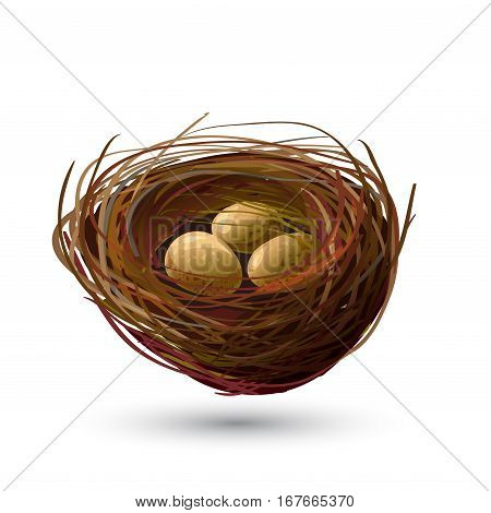 Bird Nest And Golden Eggs