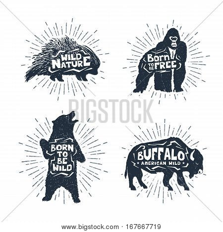 Hand drawn textured vintage badges set with porcupine gorilla bear and buffalo vector illustrations and inspirational lettering.