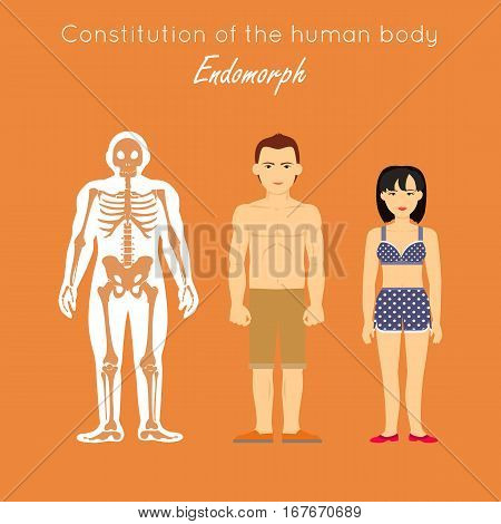Constitution of human body. Endomorph. Endomorphic characterized as fat, short, having difficulty losing weight. Enjoy food, people and affection. Has slow reactions. Disposed to complacency. Vector