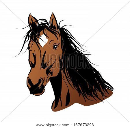 Illustration of brown horse head with long mane