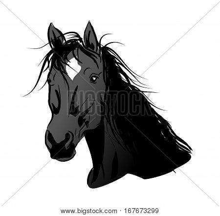 Illustration of black horse head with long mane