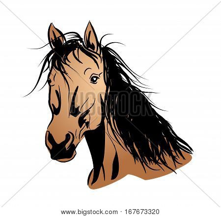 Illustration of light brown horse head with long mane