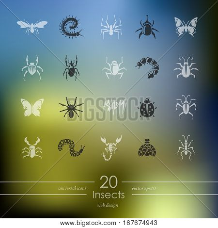 insects modern icons for mobile interface on blurred background