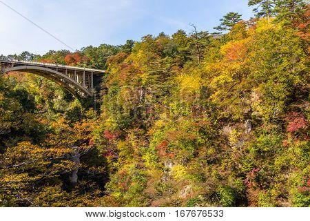 Naruko Gorge with colorful autumn foliage