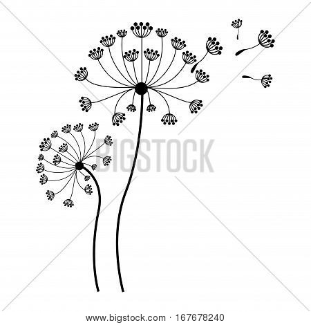 silhouette dandelion with stem and pistil and fly petals vector illustration