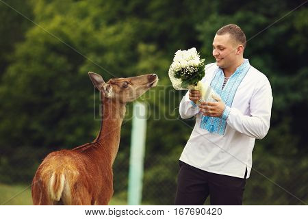Groom In Embroidered Shirt Stands With A Bouquet Behind A Young Deer