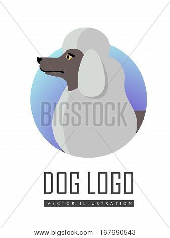 Dog logo vector illustration of white standard Poodle isolated. Single layer coat no undercoat is present composed of dense, curly fur. Medium size breed. Considered as hypoallergenic. Vector