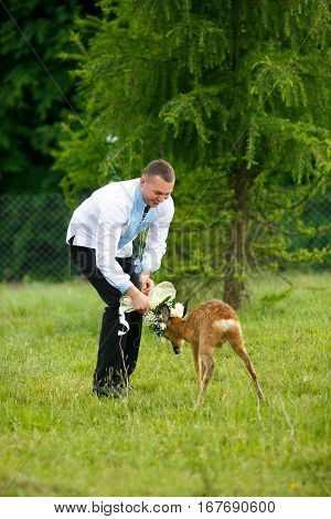 Little Deer Attacks A Wedding Bouqet Held By A Groom In Embroidered Shirt