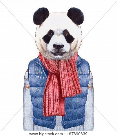 Animals as a human. Panda in down vest, sweater and scarf. Hand-drawn illustration, digitally colored.