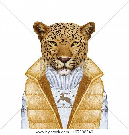 Animals as a human. Portrait of Leopard in down vest and sweater. Hand-drawn illustration, digitally colored.