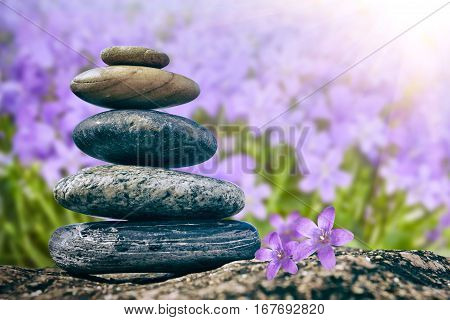 Zen Balancing Pebbles on flower Nature background