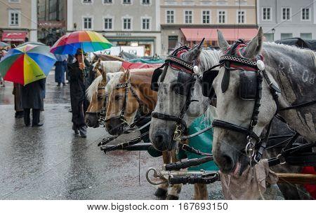 SALZBURG AUSTRIA - JUNE 12 2012: Horse-drawn carriage at Salzburg city center
