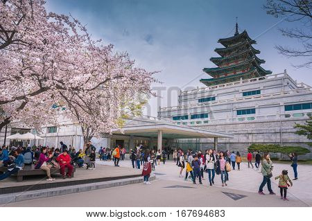 SEOUL - APRIL 12 2015: Gyeongbokgung Palace in Spring April 12 2015 in Seoul South Korea.