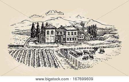 Farm sketch. Farming, agriculture vineyard or animal husbandry