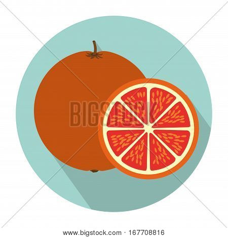 colorful circular shape with orange fruit and slice with shading vector illustration