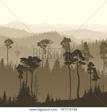 Square illustration of morning misty coniferous forest hills.