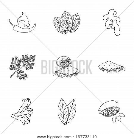 Herb and spices set icons in outline style. Big collection of herb and spices vector symbol stock